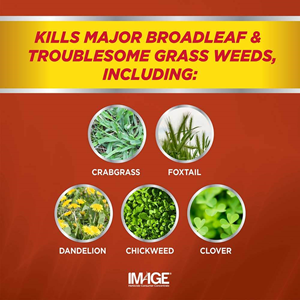Image Crabgrass Killer Concentrate kills broadleaf and grass weeds including: crabgrass, foxtail, dandelion, chickweed and clover.